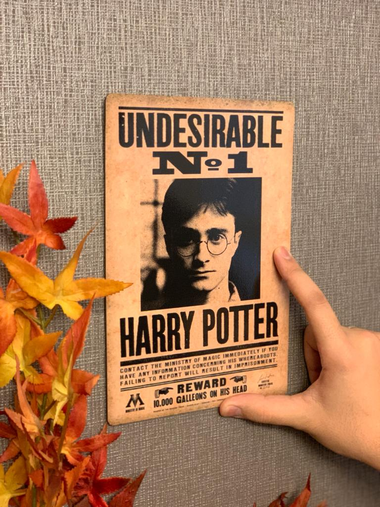 Placa Decorativa Undesirable: Harry Potter