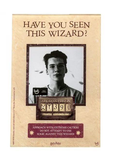 Porta Retrato Wanted: Harry Potter