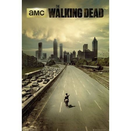 Poster Moldurado The Walking dead