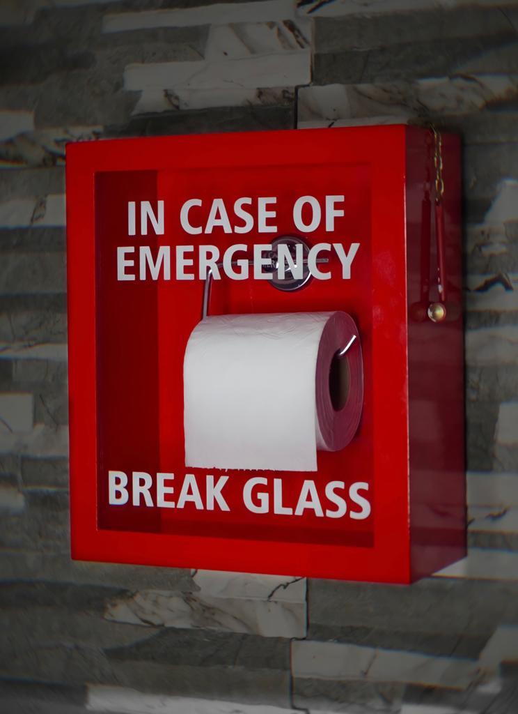 Quadro 3D Caixa Papel Higiênico Em Caso De Emergência Quebre o Vidro In Case Of Emergency Break Glass