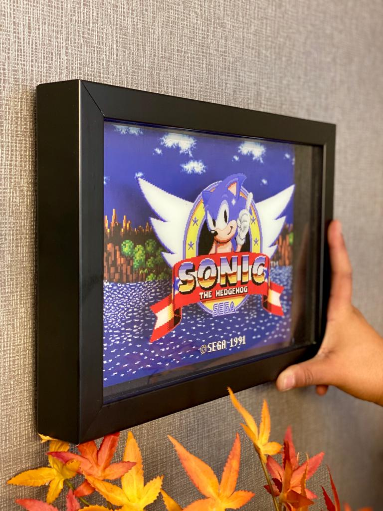 Quadro 3D : Sonic The Hedgehog