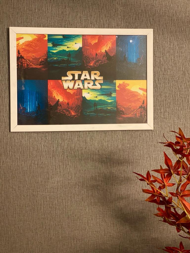 Quadro Com Moldura Cenários Star Wars 46x33 - EV