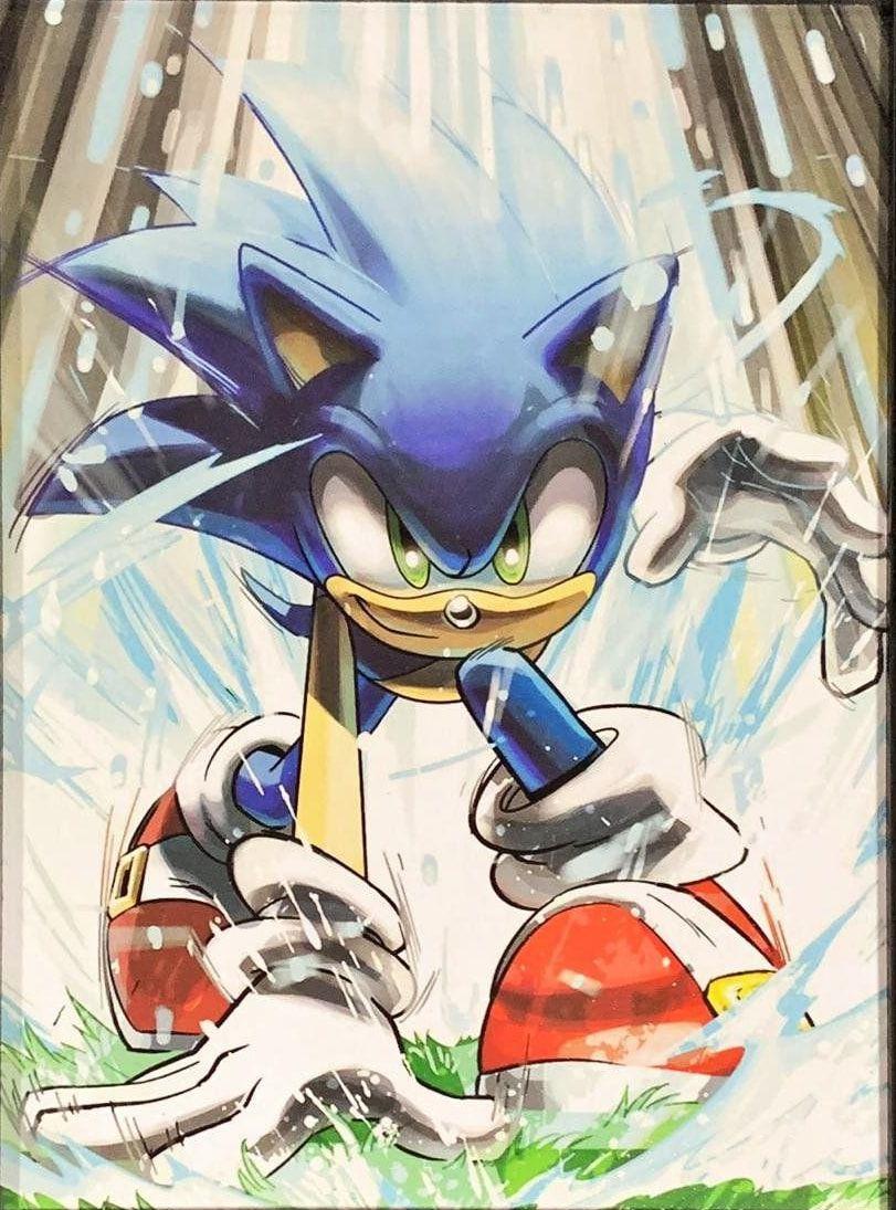 Quadro com Moldura Branca Sonic the Hedgehog