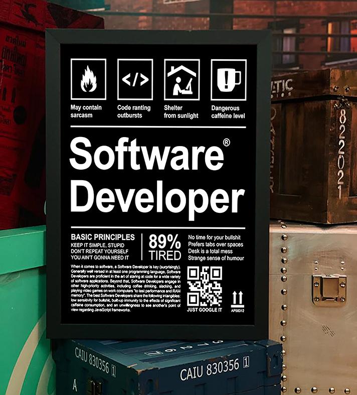 Quadro com Moldura Desenvolvedor De Software Programação Desenvolvimento Linguagens HTML JAVA - 46x33 - EV