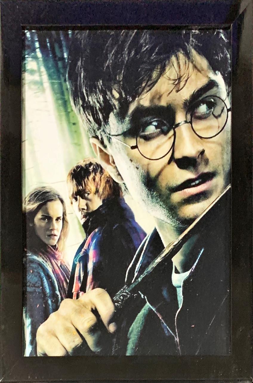 Quadro com Moldura Harry, Rony e Hermione: Harry Potter 44x33 - EV