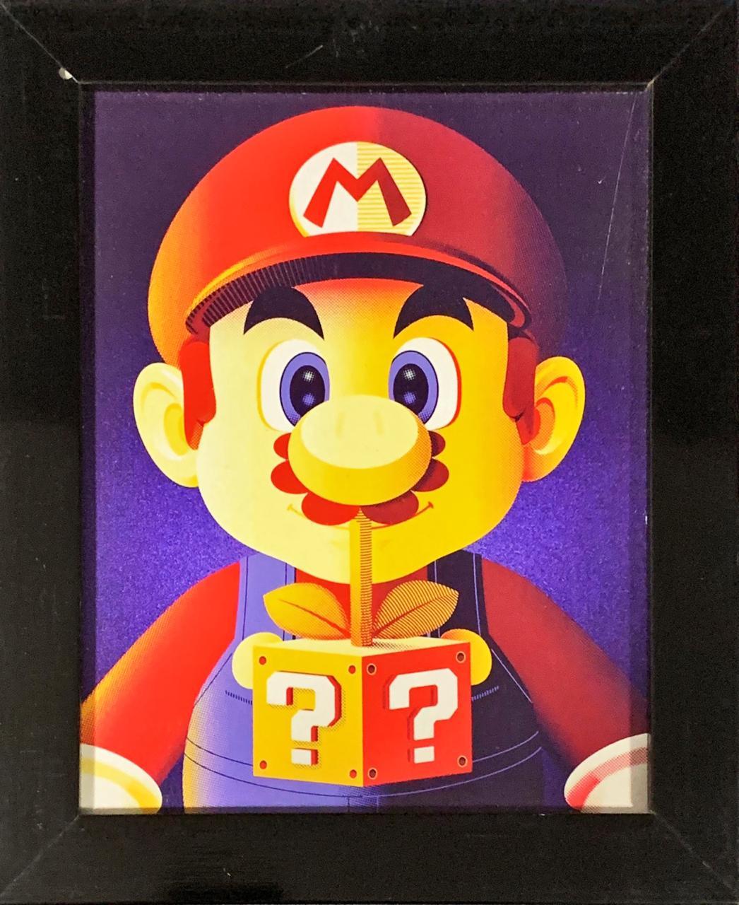 Quadro com Moldura Mario: Sper Mario Bros - 24x29