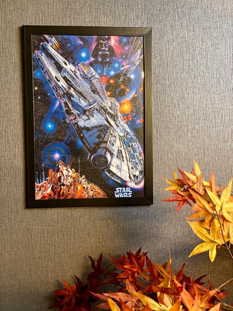 Quadro Com Moldura: Millenium Falcon ( Star Wars) - 46x33