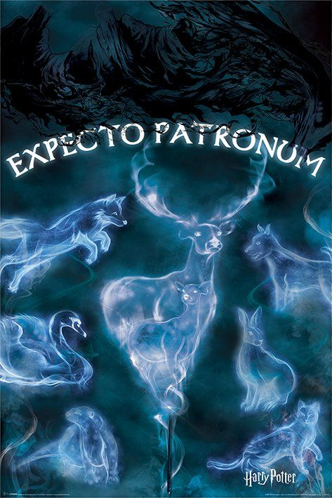Quadro Expecto Patronum: Harry Potter - Wall Street Posters