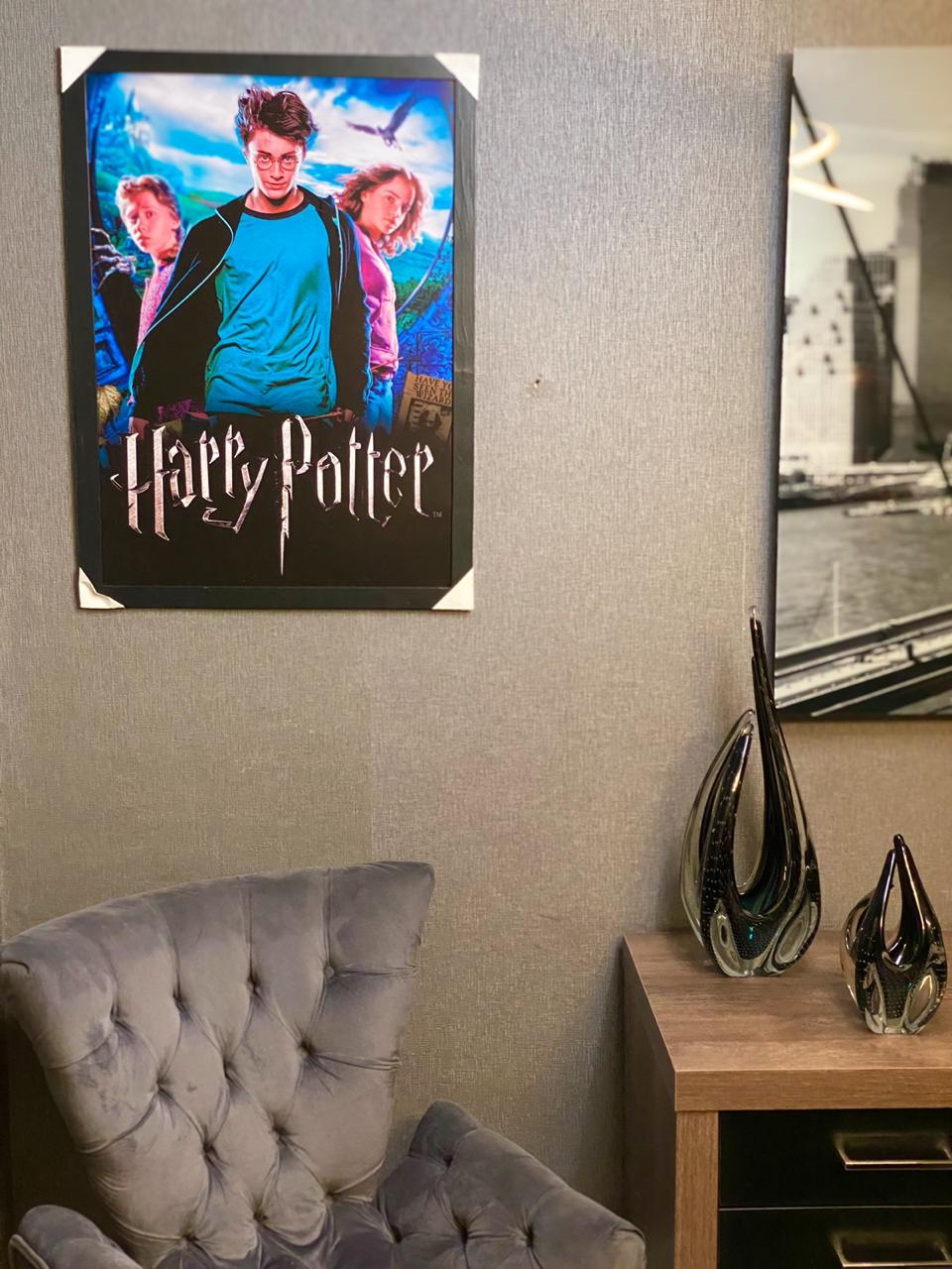 Quadro: Harry Potter