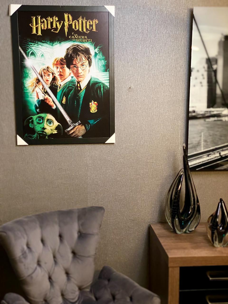 Quadro Com Moldura Harry Potter e a Câmera Secreta 46x33 - EV