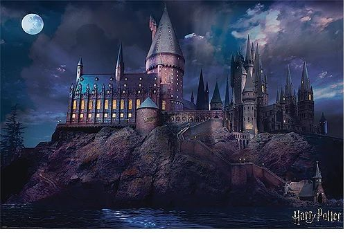 Quadro (Poster) Hogwarts: Harry Potter - Wall Street Posters