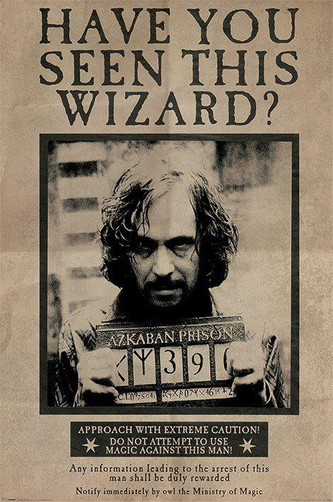 Quadro Sirius Black: Harry Potter - Wall Street Po