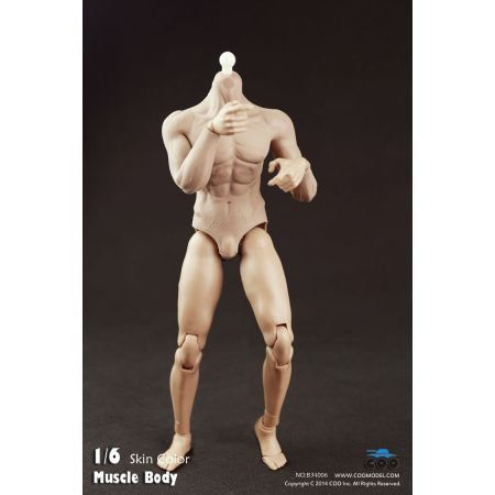 Rubber Muscular Body B3006 1:6 - Coo Model