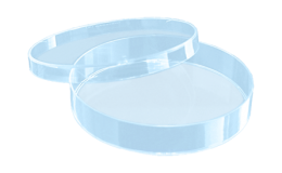 Placa de petri sarstedt 35x10mm, ventilada, estéril, caixa com 500 unid.