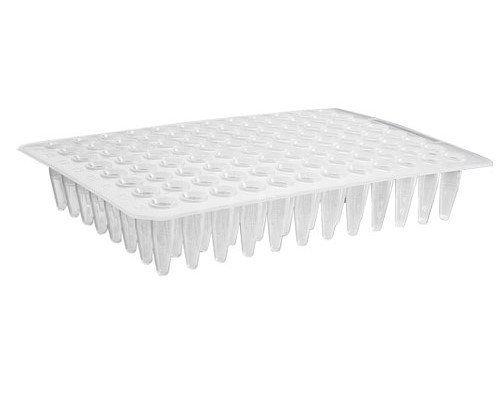 Microplaca para PCR 96 Poços sem Borda, sem Poços Elevados 100 und./ pct. Axygen