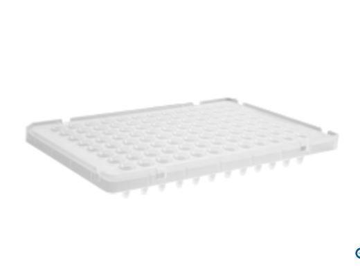 Microplaca P/ RT-PCR (qPCR) 0,1mL 96 Poços, Meia Borda Elevada P/ ABI 7500 Fast, (e outros) 25 und. pct. Axygen LC
