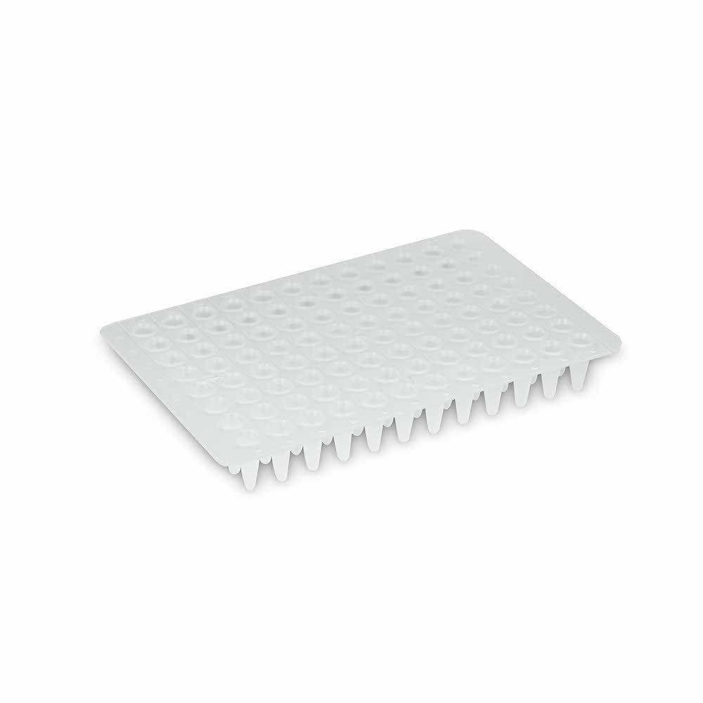 Microplaca QPCR Sem Borda 96 Poços Low Profile - 25 und./ pct. Kasvi