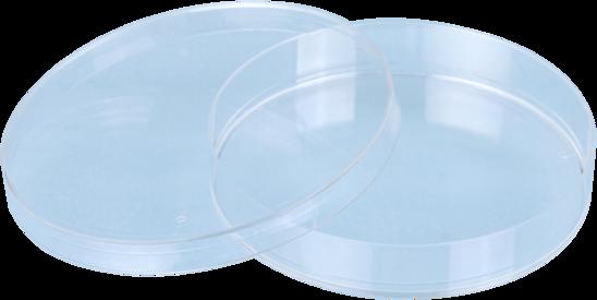 Placa de petri sarstedt, 92x16mm, estéril, caixa com 480 unid.