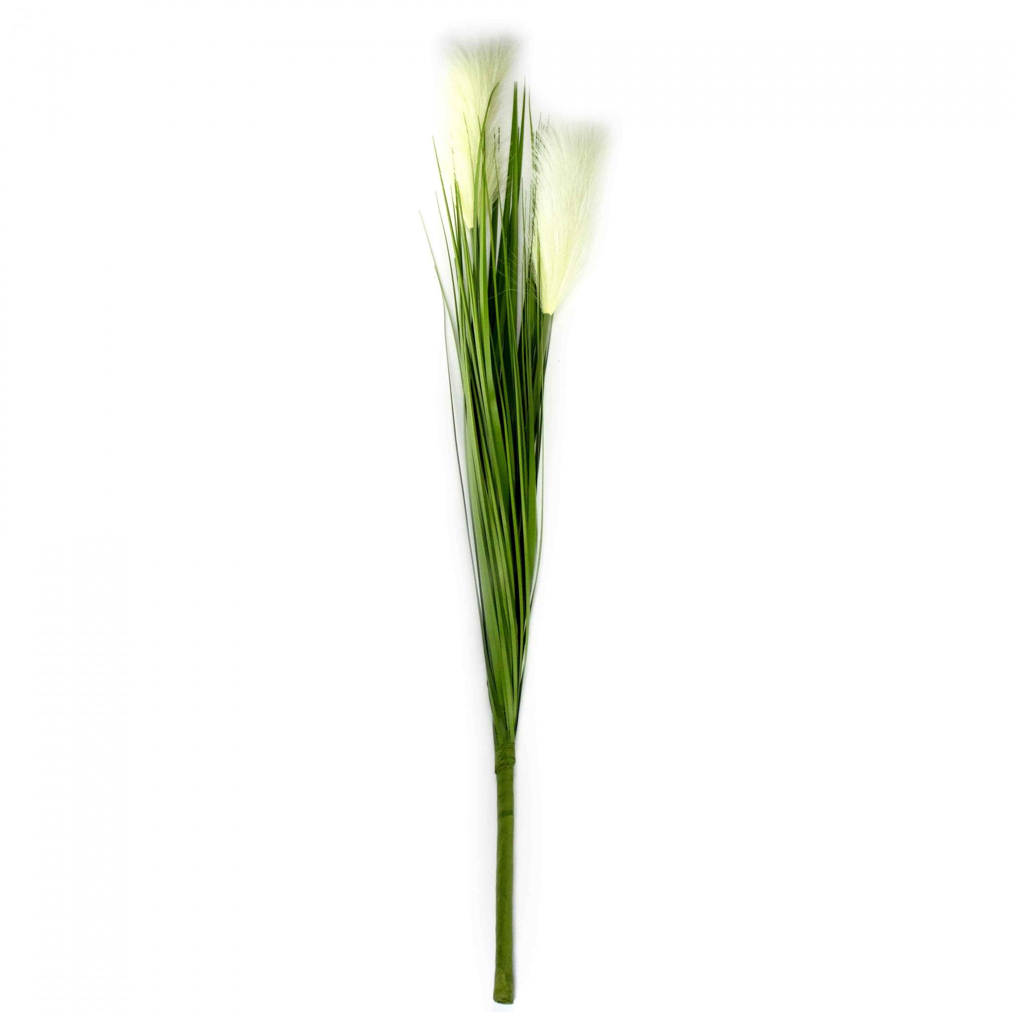 Capim dos Pampas com 2x Pluma Branco 75 cm - D'Rossi