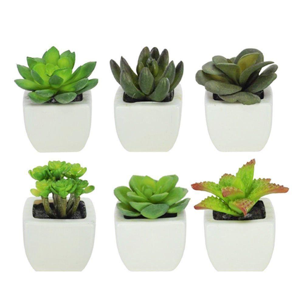 Vaso Decorativo Plástico Branco Planta Suculenta Sortida Verde 9 cm com 6 Unidades - D'Rossi