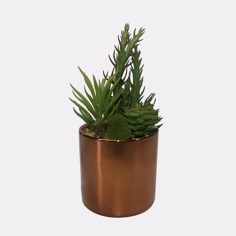 Vaso Decorativo Planta Suculenta Verde 15 cm - D'Rossi