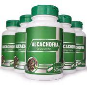 Alcachofra - 500mg - 05 Potes