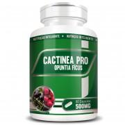 Cactinea Pro - Original - Opuntia Fícus - 60 cápsulas de 500mg