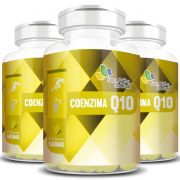 Coenzima Q10 - 500mg - 3 Potes