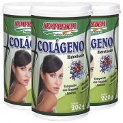 Colágeno Hidrolisado em Pó, Natural, com Vitaminas e Minerais - 200g - 03 Potes