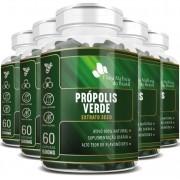 Própolis Verde - Extrato Seco - 500mg - 05 Potes com 60 cápsulas (cada)