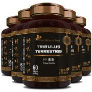 Tribullus Terrestris (Ji Li - Tribuli Fuctrus) - 100% Vegano - 5 Potes