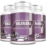 Valeriana 100% Pura 500mg - 03 Potes