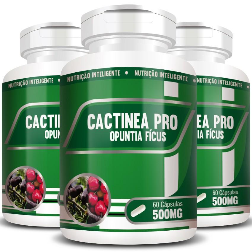 Cactinea Pro 500mg - Original - Opuntia Fícus - 03 Potes  - Natural Show - Produtos Naturais, Suplementos e Cosméticos