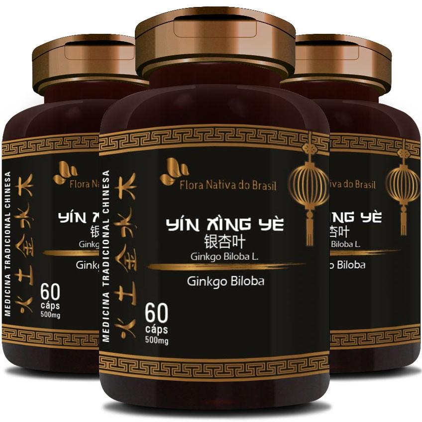 Ginkgo Biloba (Bai Guo) 500mg - O Legítimo - 3 Potes (180 cáps.)