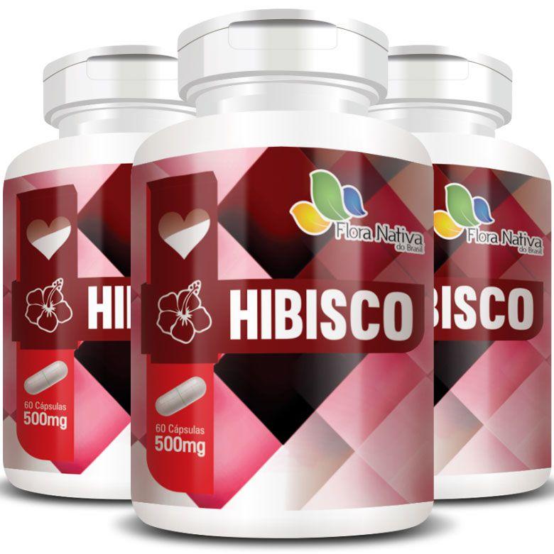 Hibisco - 100% Puro - 3 Potes c/ 60 cápsulas cada  - Natural Show - Produtos Naturais, Suplementos e Cosméticos