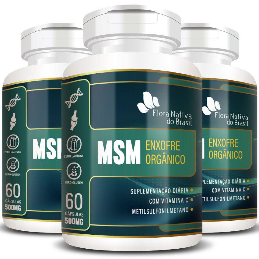 MSM - Enxofre Orgânico - 500mg (03 Potes)  - Natural Show - Produtos Naturais, Suplementos e Cosméticos
