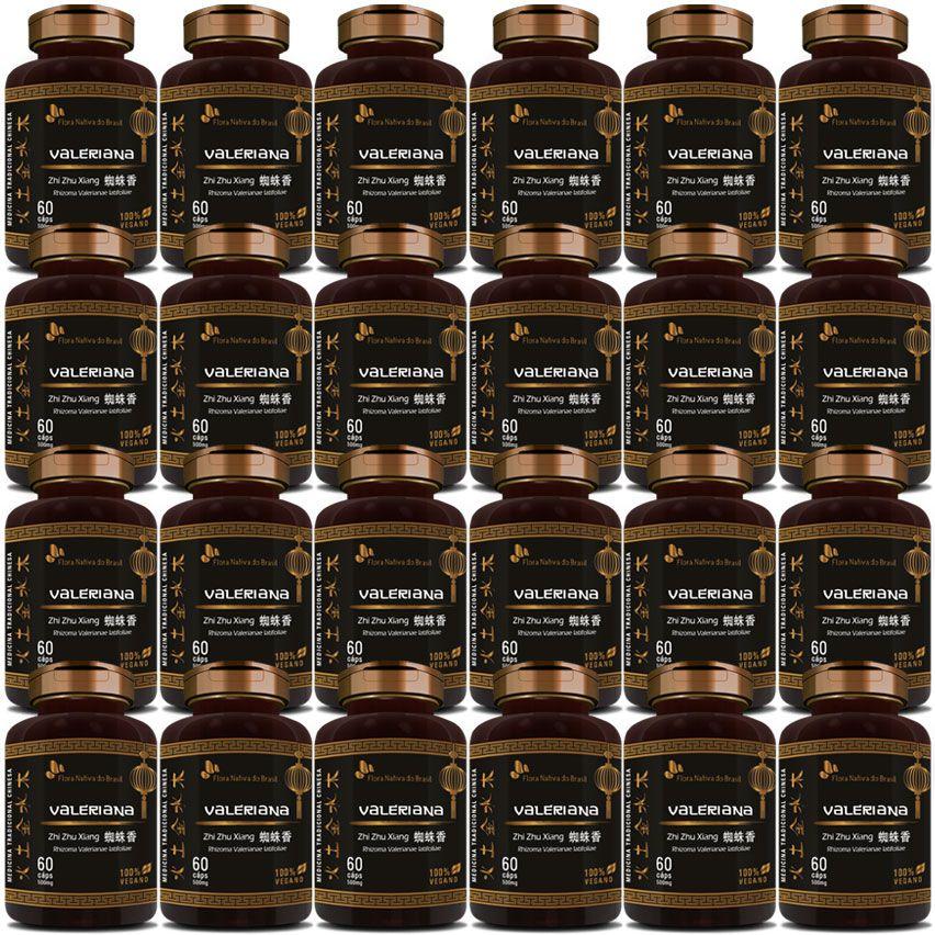 Valeriana (Zhi Zhu Xiang - Rhizoma Valerianae Latifoliae) - 24 Potes (Atacado)  - Natural Show - Produtos Naturais, Suplementos e Cosméticos