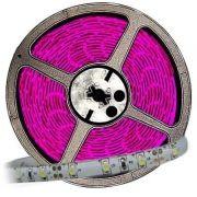 Fita LED 3528 12V Rolo com 5m Luz Pink IP65