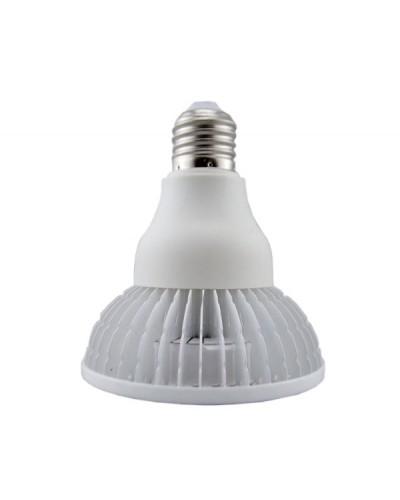 Lâmpada LED PAR30 12W E27 Bivolt