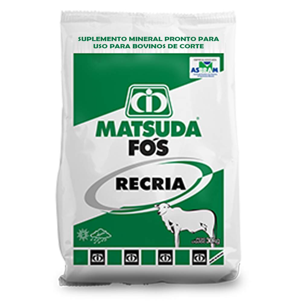 Suplemento Mineral Para Bovinos e Gado de Corte Recria Fós Recria Matsuda