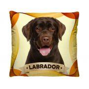 Almofada Labrador