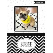 Diário Para Cachorro e Gato Pet Personalizado Com Foto e Nome