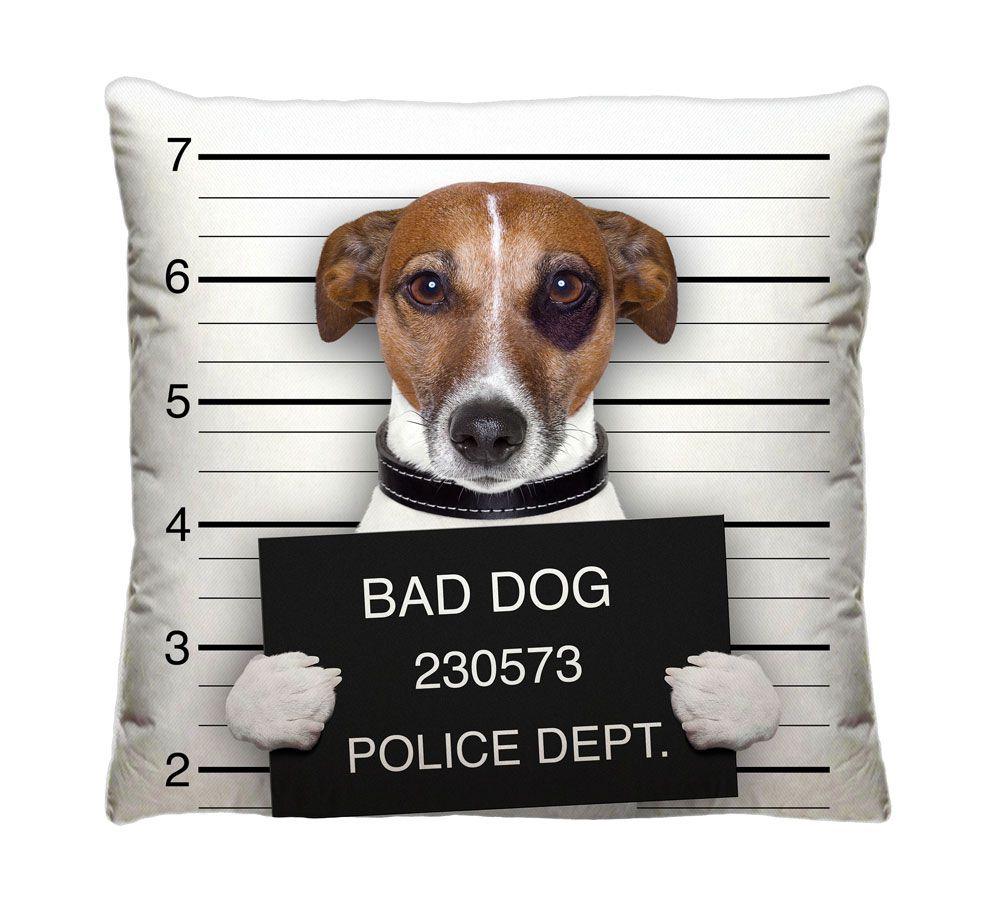 Almofada Cachorro Detento