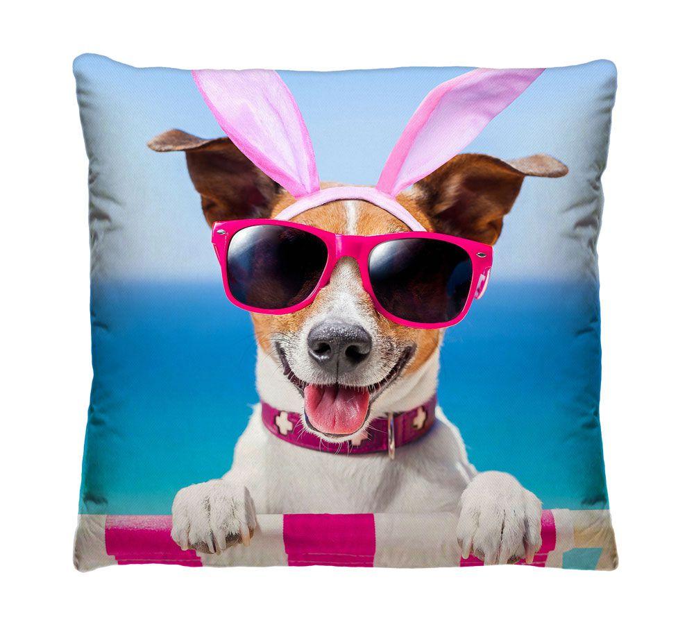 Almofada Dog na Praia