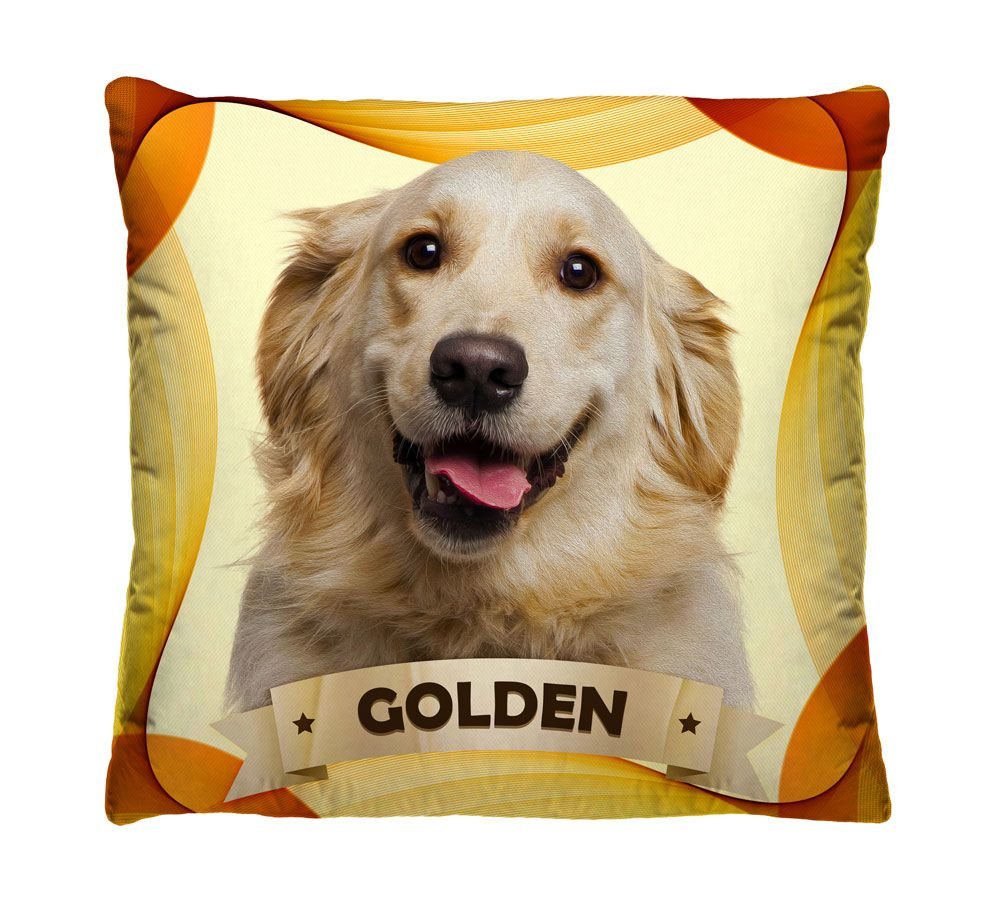 Almofada Golden