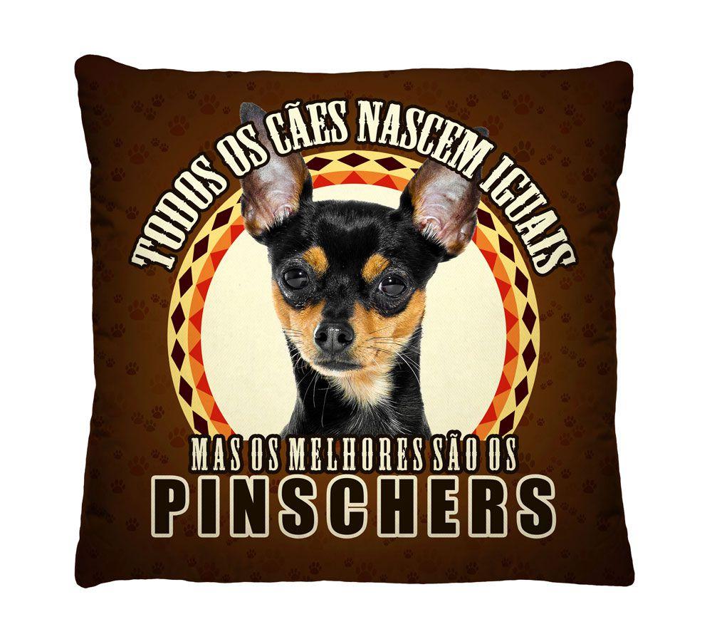 Almofada Pinscher Os Melhores