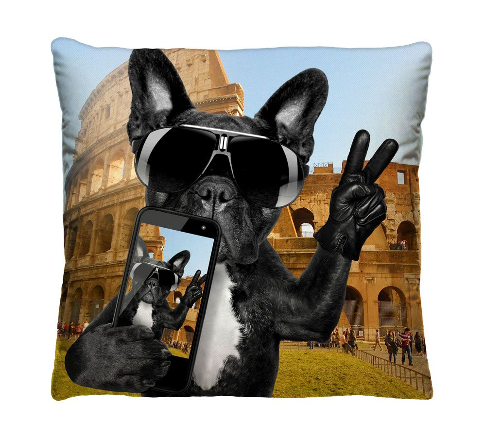 Almofada Selfie Bulldog Francês