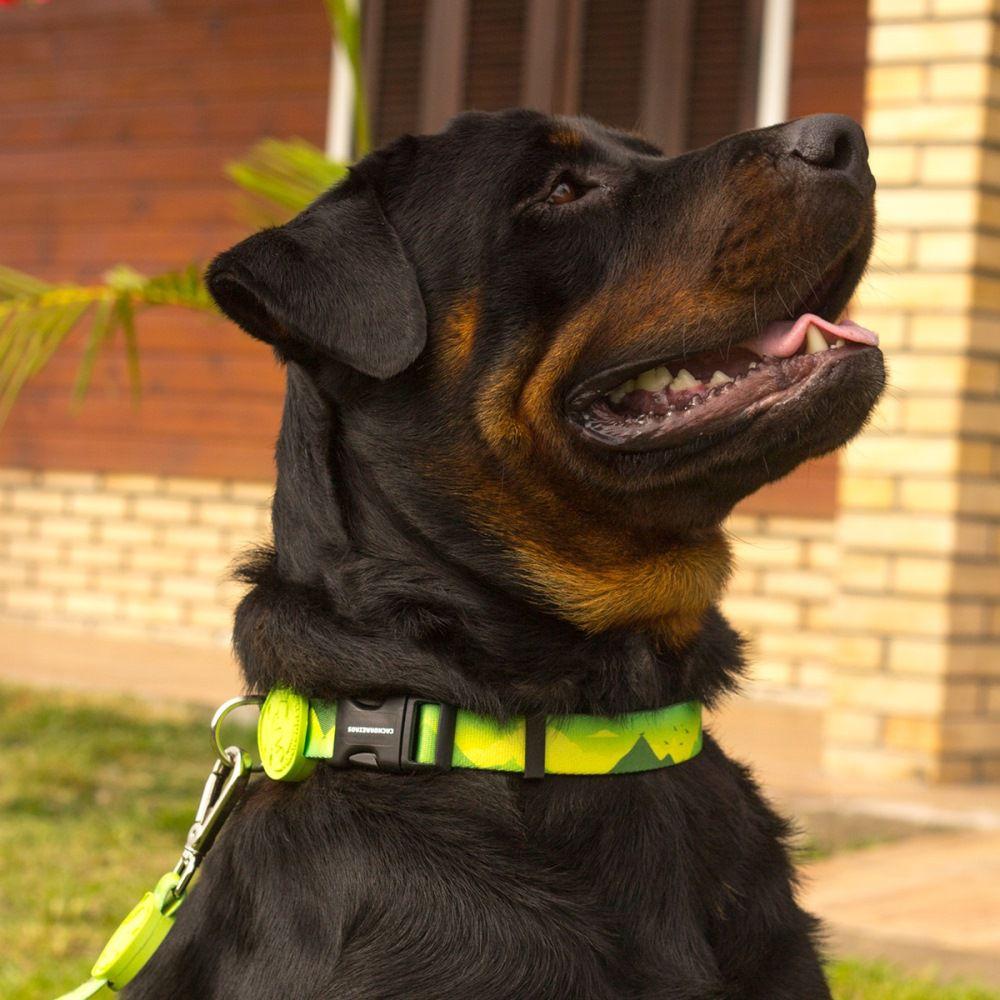 Coleira para Cachorro Cachorreiros Adventure - Frete Grátis Sul e Sudeste