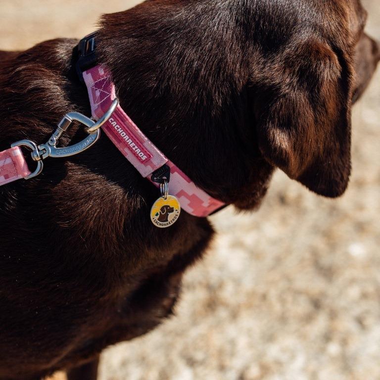 Coleira para Cachorro Camuflado Rosa