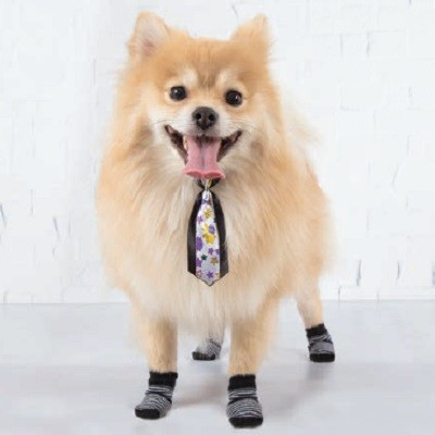 Meias LuLupo Pet Socks - Preta